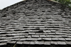 Larch-wood roof shingles