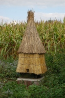 Skep house thatched
