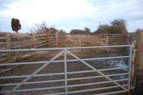 Traditional Sussex chestnut-wood post and rail fencing